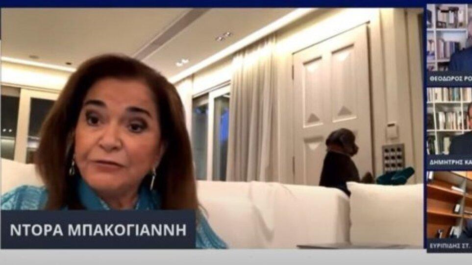 Ντόρα Μπακογιάννη: Η… παρέμβαση του σκύλου της σε διαδικτυακή συζήτηση και η απίστευτη αντίδρασή της